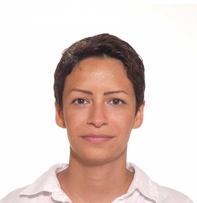 Faranggis Bagheri, GoVirtual Nordic AB